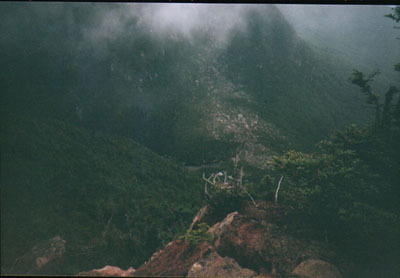 View into Carter Notch from Wildcat A